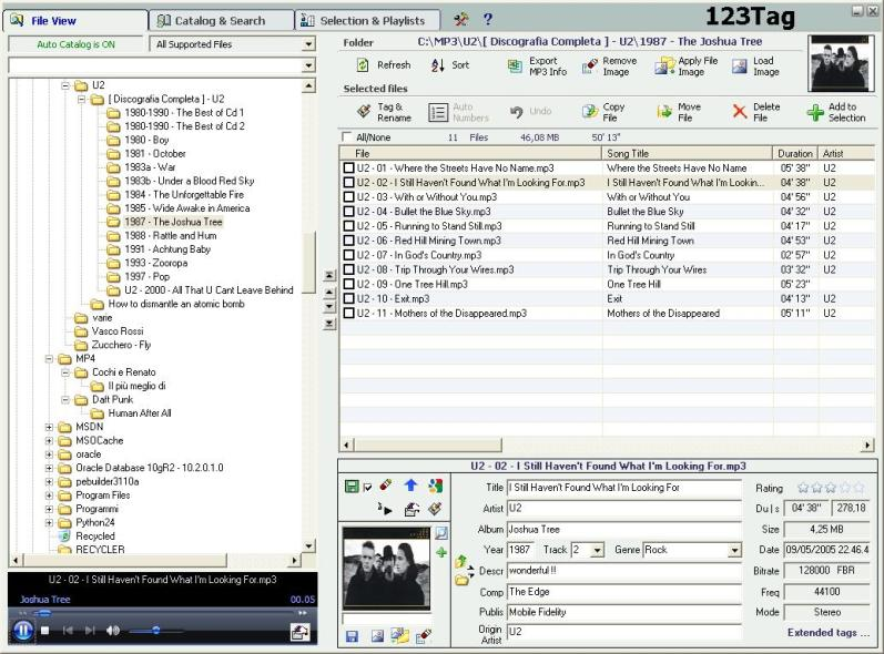 MP3/WMA/MP4 iTunes Tag editor, Audio Catalog